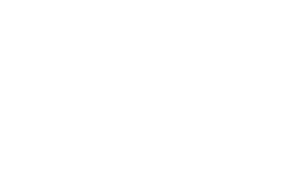Logo Boston Dynamics